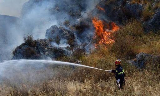 Φωτιά σε κυπαρίσσια στο Βιρό